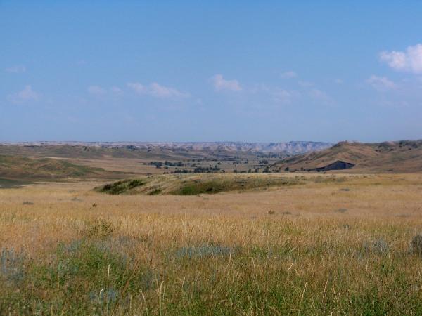 Indian Creek - Buffalo Gap Natl. Grassland
